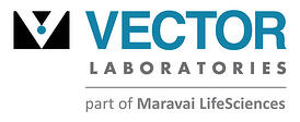 vector_laboratories_logo_transparent