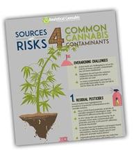 4CommonCannabisContaminants_Infographic