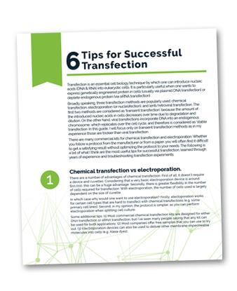 6TipsForSuccessfulTransfection_List.png