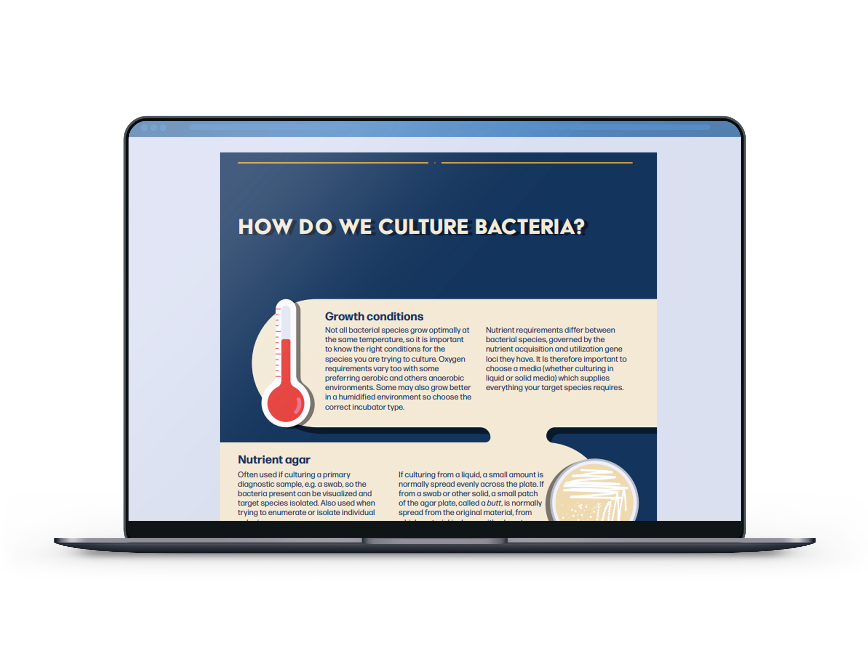 CultureBacterial_MokeUp