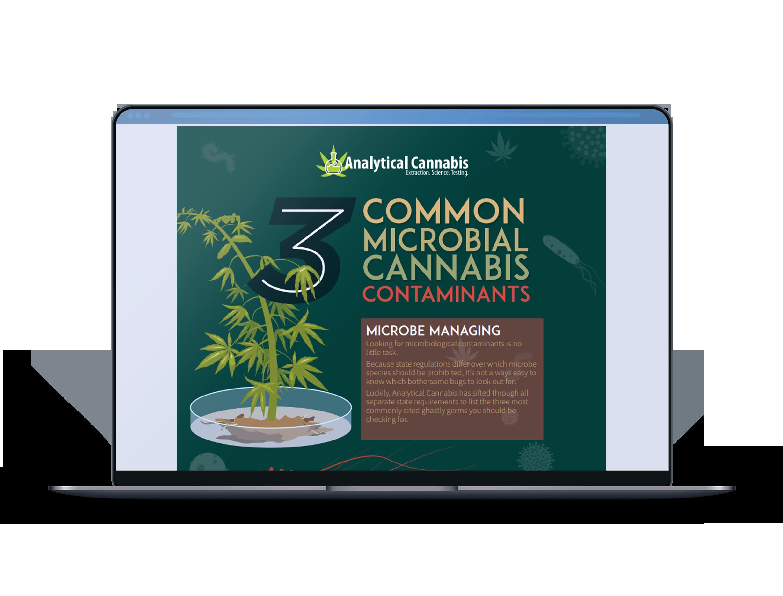 CannabisInfographic_MokeUP