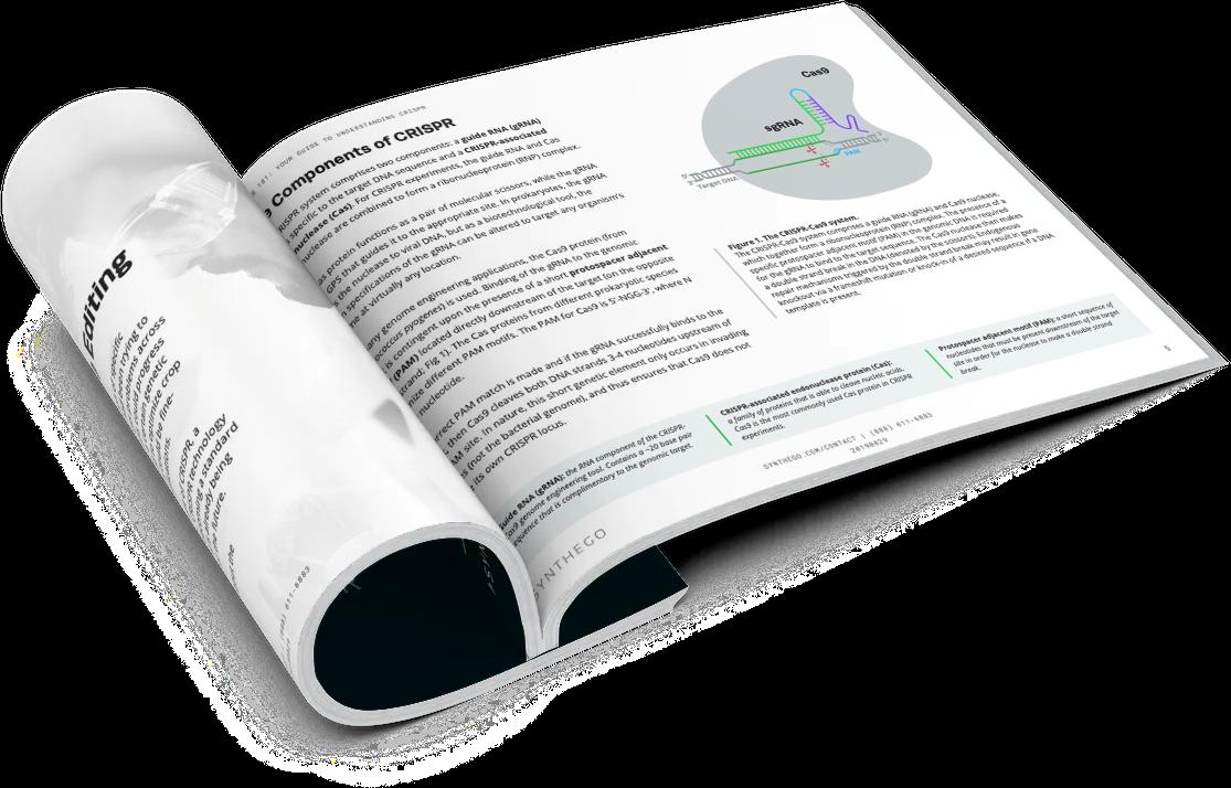 CRISPR 101 eBook